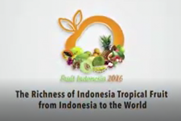 Fruit Indonesia